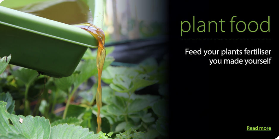 Plant food - feed your plants fertiliser you made yourself